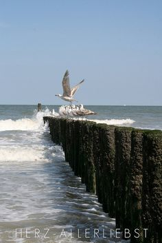 Meer by herz-allerliebst, via Flickr