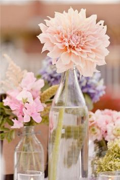 Bottles to showcase a beautiful single flower