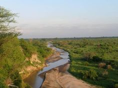 An integrated plan to conserve the Kwakuchinja Corridor, N. Tanzania  Website: www.awf.org