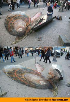 Arte callejero: Caracol.