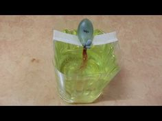 745 다육식물 나는 물로 키운다 잎꽂이 물꽂이 페트병 화분 재활용 만들기 Succulent plant - YouTube