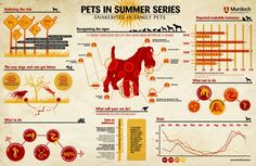 Infographic shows what to do if our pets ever come across a snake.