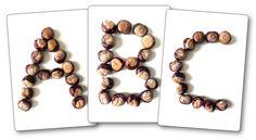 Fiches modèles alphabet avec des marrons