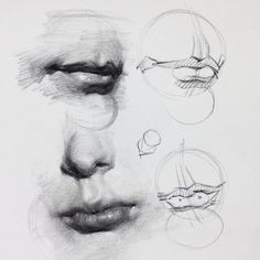 Excellent Drawing Faces With Graphite Pencils Ideas. Enchanting Drawing Faces with Graphite Pencils Ideas. Anatomy Sketches, Anatomy Drawing, Anatomy Art, Art Sketches, Anatomy Study, Pencil Drawing Tutorials, Art Tutorials, Pencil Drawings, Art Drawings
