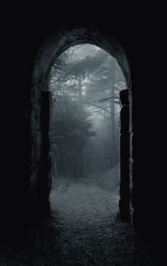 The entrance, that had been sealed for as long as I can remember, was now gaping wide. It was beckoning me into the world I had never seen. The one she warned me about. Reality. --- Kerissa