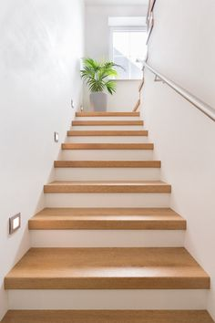 Inventive Staircase Design Tips for the Home – Voyage Afield Open Staircase, Wooden Staircases, Staircase Design, Staircase Lighting Ideas, Flur Design, Stair Walls, Building Stairs, Traditional Staircase, Staircase Makeover
