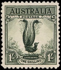 Australia - Postage Stamp - Lyrebird - 1932. The Lyre Bird is an Australian bird that can mimic sounds from their environment.