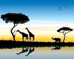 free vector download vecto2000.com file type .cdr .eps .ai .pdf africa, african, animal, art, background, baobab, beauty, birds, black, bush, color, dawn, desert, dusk, elephant, evening, field, giraffe, horizon, illustration, journey, kenya, land, landscape, morning, nature, orange, outdoors, park, plant, reflection, safari, scene, silhouette, sky, summer, sun, sunlight, sunrise, sunset, tourism, tourist, travel, tree, tropical, twilight, water, wild, wildlife, zoo
