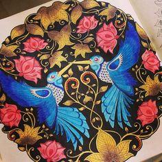 Encantada com esse colorido da  @brucaroliina  -  . . . ✔ Use #jardimdascores ,nos marque ou envie direct com sua foto  . . . #jardimsecreto #colorindo #jardimcolorido #jardimsecretoinspire #SecretGarden #enchantedforest #florestaencantadatop #florestaencantada #LivroDeColorir #livro #jardimsecretolovers #Regrann