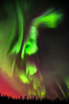Northern lights Alaska