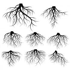 Illustration: set of tree roots Premium . Roots Drawing, Mom Drawing, Libra Sign Tattoos, Roots Tattoo, Dibujos Tumblr A Color, Unique Tattoo Designs, Tree Roots, Drawing Projects, Fractal Art