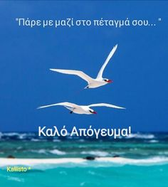 Good Morning, Greek, Movies, Movie Posters, Beautiful, Buen Dia, Bonjour, Films, Film Poster