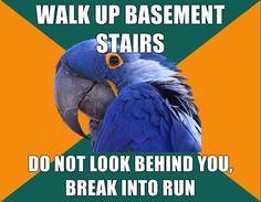 Paranoid Parrot.