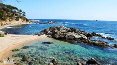 Cala den Remendón - Palamós http://ift.tt/1Yl7BrK #costabrava #redcostabrava #palamos #nature #naturaleza #beach #viaje #mar #playa #girona #emporda #catalunyaexperience #catalunyafotos  #sun_and_beach_sb #bestplacestogo #mediterranean  #mediterraneo  #travel #traveling #picoftheday #fotodeldia #КостaБрава  info http://ift.tt/1EOM95f