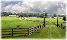 Google Image Result for http://www.crosslandrealty.com/images/Citrus-County-Ranch.jpg
