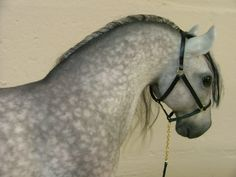 "Needle-Felted Dapple-Gray Horse w/ Air-Brushed Coloration by Enchanted Equines in Fla. 12""T X 14""L."