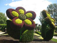 Japanese Garden, Atlanta Botanical Garden. Www ... Lebendige Skulpturen Im Garten Atlanta