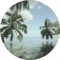 Visit the Bahamas.