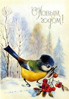 "Russian vintage New Year's postcard. 1989. Artist  L. Manilova. The inscription is: ""Happy New Year!"" A Great Tit is holding a twig with red berries. #Russian #art #vintage #postcards"