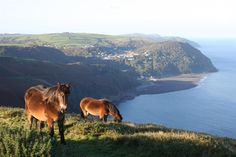 view of Lynton Lynmouth