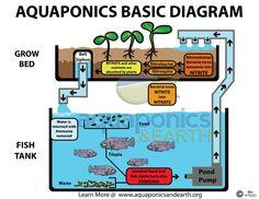 Basic Aquaponics set-up                                                                                                                                                                                 Mehr