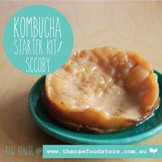 #Kombucha starter ki