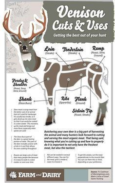 Responsible hunting, game management and wildlife conservation are important aspects of any wild game hunting, but many find the challenge of deer hunting to be the most challenging. Here are some ideas and deer hunting tips to make y Deer Recipes, Wild Game Recipes, Lamb Recipes, Deer Hunting Tips, Hunting Gear, Crossbow Hunting, Hunting Dogs, Pheasant Hunting, Hunting Season