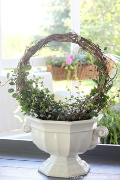See how easy it is to train an angel vine (or wire vine) into a topiary form. You only need a few simple supplies and this tutorial to make your own! Flower Planters, Garden Planters, Garden Art, Flower Pots, Garden Design, Topiary Garden, Roses Garden, Garden Shrubs, Fruit Garden