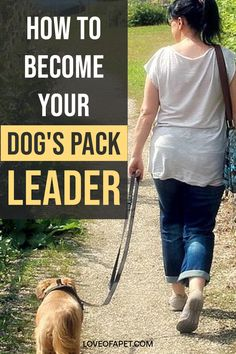 Follow The Leader, Doodle Dog, Dog Language, Kinds Of Dogs, Leadership Roles, Good Buddy, Take Back, Make A Person, Dog Eating
