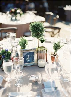 What about herb topiary's and candles for centerpieces?  Is that cheaper than flowers?