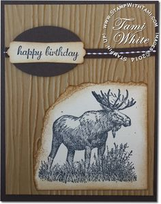 "Hey baby...take a walk on the wild side...great man ""moose"" birthday card. #stampinup"