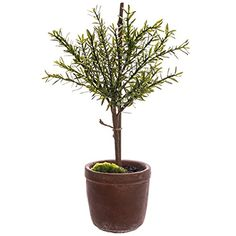 18' Myrtle Ball-Shaped Artificial Topiary Plant w/Cement Pot -Green (pack of 4) >>> Click image to review more details.