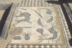 Volubilis, Archaeological Site, Mosaic, Bohemian Rug, Africa, Decor, Classroom, Decoration, Mosaics