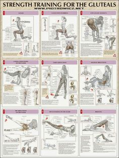 Strength training for the gluteals