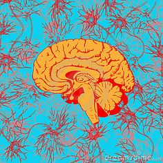 LSD alters the neural response to music in a number of brain regions - The researchers found that non-meaningful songs gained a sense of meaningfulness under the influence of LSD, in a new study published in the journal Cerebral Cortex.