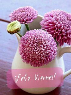 Fresh Luxury vase of flowers Decorating Ideas My Flower, Flower Vases, Fresh Flowers, Pretty In Pink, Pink Flowers, Beautiful Flowers, Simple Flowers, Coral Charm Peony, Colorful Roses