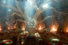 legend of the guardians owl images | legend-of-the-guardians-the-owls-of-ga-hoole-4.jpg