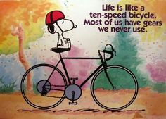 Bicycle Life