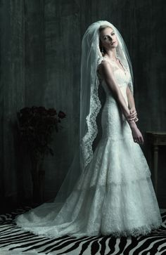 beautiful,.. maybe lace as a classic theme. Love veil