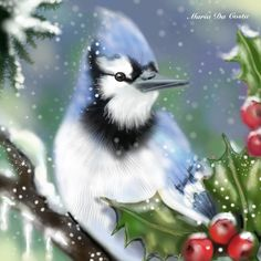'Love is Blue' bluejay in the snow