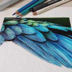 amazing, art, and bird imageの画像