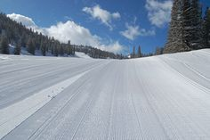 groomed beginner terrain by Mt. Rose Ski Tahoe, via Flickr