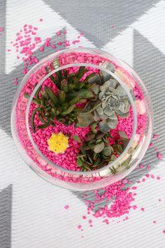Aquarium rock planter
