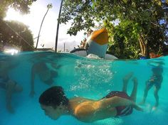 From @f_rodz PRVerano los 365 días del año  #puertorico #summer #pr_beautiful #pr_greatshots #photos_pr #placespr #familyfun #familia #poolday #whateverpr #hashtagpr #loves_puertorico #gopro #waterhousing #goprodome #adventure_pr #gopromoments #gopro_pr Experience the beauty follow us. #puertorico #puertoricodoesitbetter #daytripperspr #puertoricogram #puertoricobound #puertoricolife #puertoricolohacemejor #puertoricoeats #puertoricovacation #prvacationclub #instagood #follow photooftheday…
