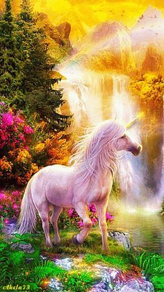 Scenery unicorns beautiful and