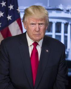 Experts Explain Trump's White House Portrait