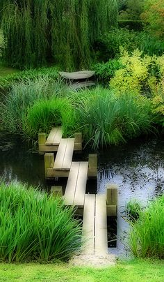Contemporary garden design with bridge