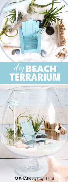 So cute! Make this beachy fairy garden to enjoy summer all year round. DIY tutorial with video included. Mini garden air plant terrarium. via @sustainmycrafth
