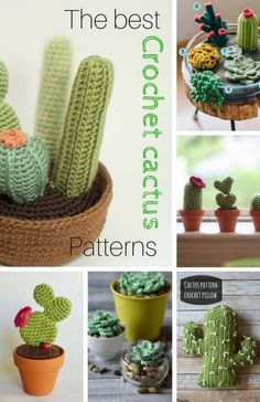 Crochet Flowers Ideas Crochet Cactus Pattern Ideas Video Tutorial - You will love this collection of Crochet Cactus Patterns and we have all the most popular ideas with lots of free patterns and video tutorial included. Crochet Cactus Free Pattern, Crochet Flower Patterns, Crochet Patterns Amigurumi, Crochet Designs, Crochet Stitches, Crochet Home, Crochet Gifts, Crochet For Kids, Diy Crochet