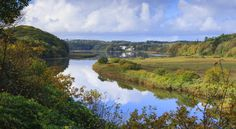 The Daugeleddau estuary is the coming together of four rivers; the Western and Eastern Cleddau, Carew and Cresswell rivers.